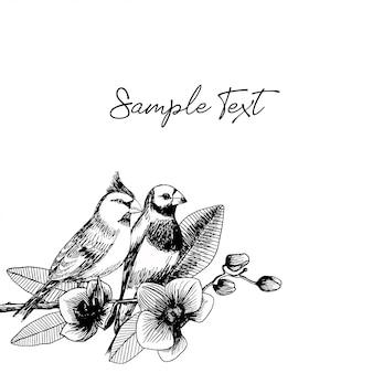 Illustrazione disegnata a mano di coppia di uccelli con fiori di orchidea
