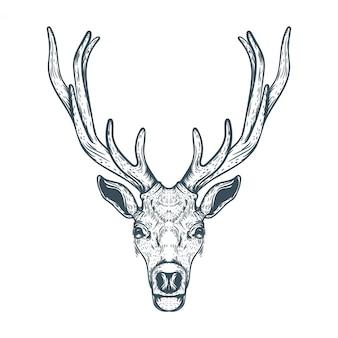 Illustrazione disegnata a mano faccia di renne