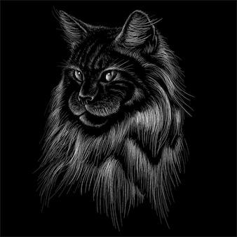 Illustrazione disegnata a mano in stile gesso del gatto