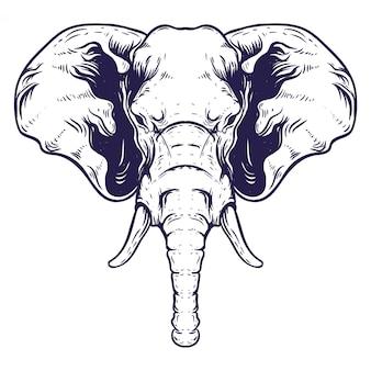 Illustrazione disegnata a mano testa di elefante