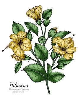 Illustrazione gialla del disegno del fiore e della foglia dell'ibisco con la linea arte sugli ambiti di provenienza bianchi.