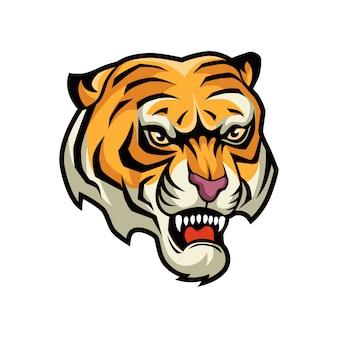 Illustrazione grafica vettoriale testa di tigre