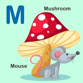 Illustrazione isolato alfabeto animale lettera m-mouse, funghi