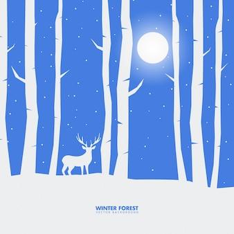 Illustrazione magica foresta invernale