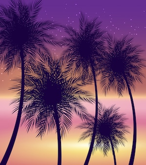 Illustrazione naturale di vettore del fondo della palma di estate astratta
