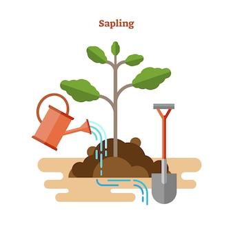 Illustrazione piana di concetto di alberello di botanica ecologica.