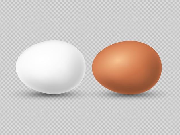 Illustrazione realistica delle uova di pollo marrone e bianco