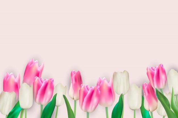 Illustrazione realistica di vettore sfondo di tulipani colorati. eps10