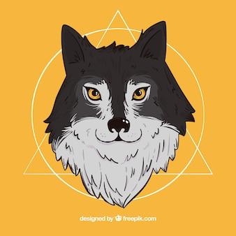 Illustrazione ritratto lupo