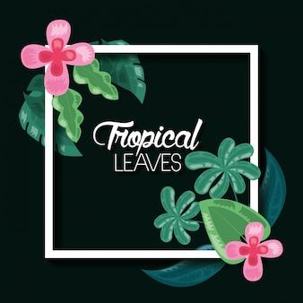 Illustrazione scura di foglie tropicali