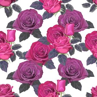 Illustrazione senza cuciture di vettore del fiore della rosa del modello