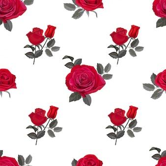 Illustrazione senza cuciture di vettore del modello della rosa rossa