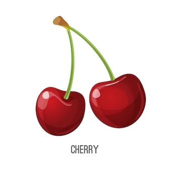 Illustrazione vettoriale di ciliegio rosso