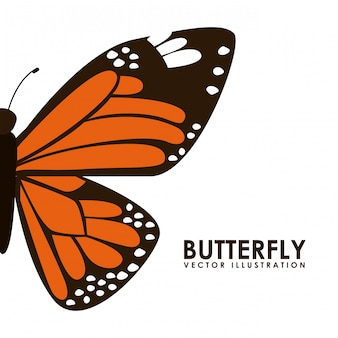 Illustrazione vettoriale di disegno grafico di farfalla