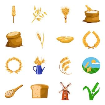 Illustrazione vettoriale di grano e raccolto segno. collezione di grano e orecchio set