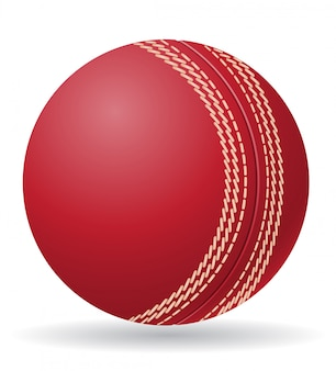 Illustrazione vettoriale di palla criket