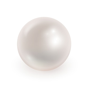 Illustrazione vettoriale di perla realistica isolata