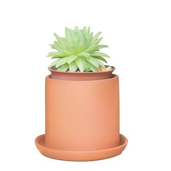 Illustrazione vettoriale di piante grasse su un vaso di argilla