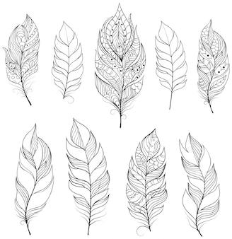 Illustrazione vettoriale di piuma