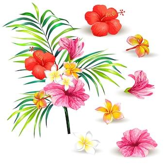 Illustrazione vettoriale di un ramo realistico stile di una palma tropicale con fiori di ibisco