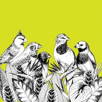 Illustrazione vettoriale disegnato a mano di uccelli esotici con fiori e foglie