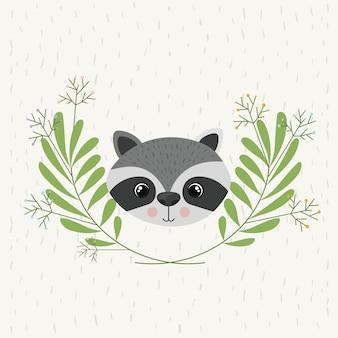 Illustrazione vettoriale isolato di icona di fauna selvatica carina procione