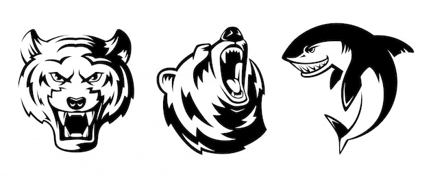 Illustrazioni di animali per badge sportivi. grizzly, tigre e squalo.