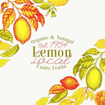 Illustrazioni di frutta vettoriali disegnati a mano.