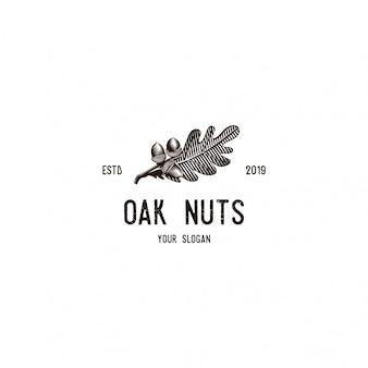 Illustrazioni di logo vintage noce e foglia di quercia