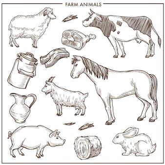 Illustrazioni piane del fumetto isolate animali svegli della fattoria messi