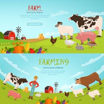 Illustrazioni vettoriali di agribusiness. bandiere con paesaggio agricolo con casa