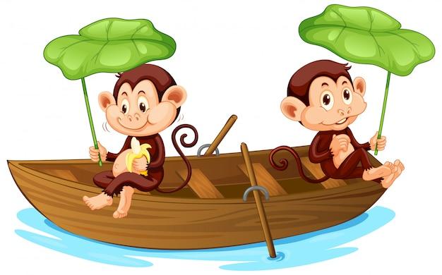 Imbarcazione a remi di due scimmie nel fiume