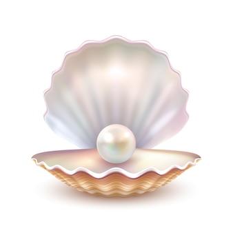 Immagine alta vicina realistica delle coperture di perla