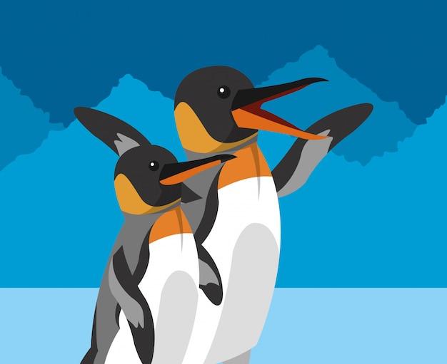 Immagine di icone relative all'habitat polare