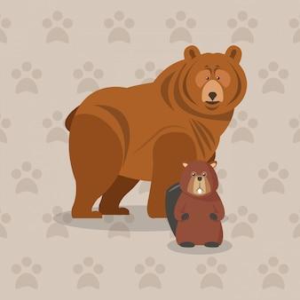 Immagine icona orso bruno