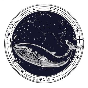 Immagine vettoriale della balena e costellazione della balena