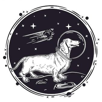 Immagine vettoriale di un bassotto nel casco di un astronauta.