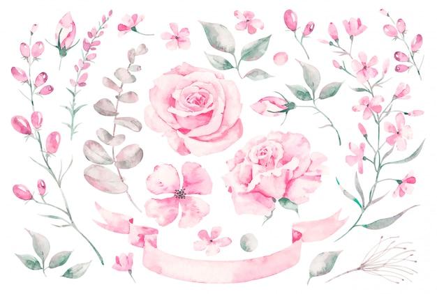 Impostare elementi dell'acquerello di rose, foglie. collezione giardino fiori rosa, foglie, rami, piante, illustrazione botanica