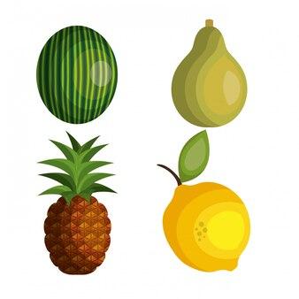 Impostare il design di frutti tropicali dei cartoni animati