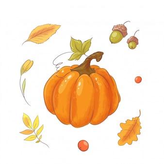 Impostare nello stile del disegno a mano zucca, autunno e foglie.
