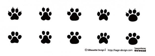 Impronte di animali