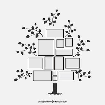 Incantevole albero piatto con cornici