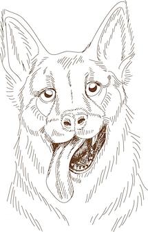 Incisione di disegno del cane