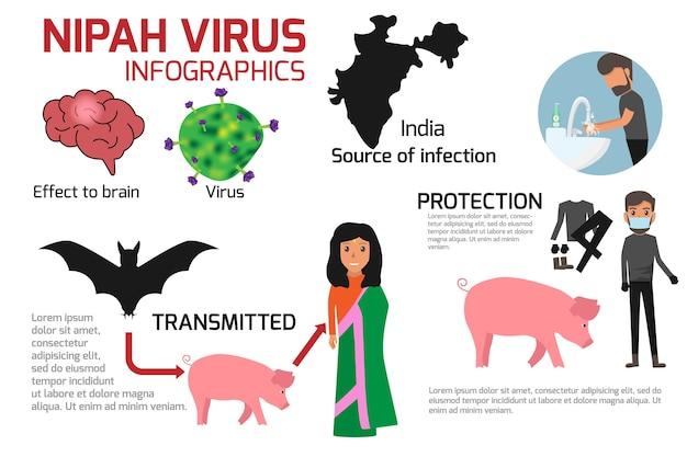 Infografica del virus nipah.