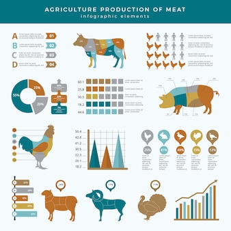Infografica di agricoltura agricoltura. grafico infographic della tavola del modello di affari di nutrizione di tecnologia dell'azienda agricola degli animali alimentari