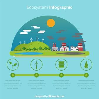Infografica ecosistema