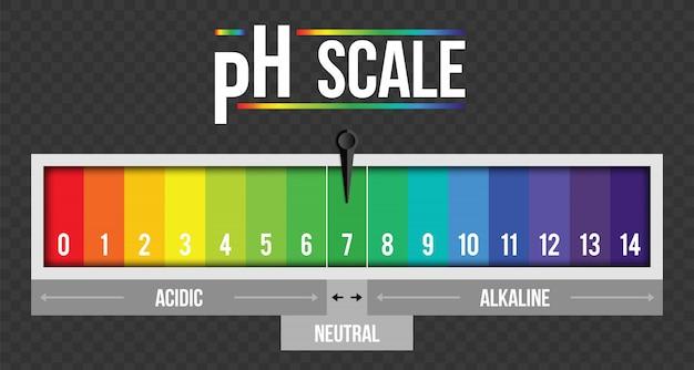 Infografica valore scala ph, elemento di carta tornasole