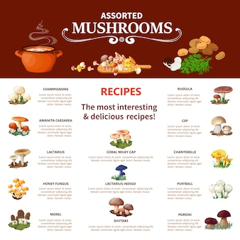 Infographics di funghi assortiti