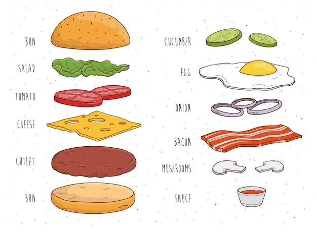 Ingredienti per hamburger separatamente. panino, insalata, pomodoro, formaggio, cotoletta, uovo, pancetta, funghi, cipolla, ketchup. illustrazione disegnata a mano colorata