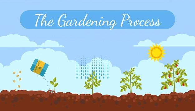 Insegna piana di vettore di processo di giardinaggio con testo